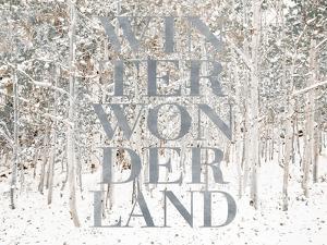 Winter Wonderland by Shelley Lake