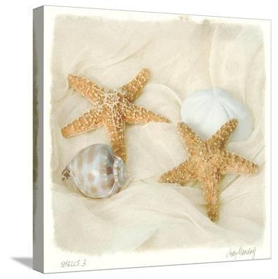 Shells III-Judy Mandolf-Stretched Canvas Print