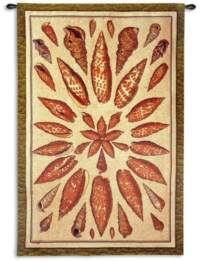 Shells of the Pacific--Wall Tapestry