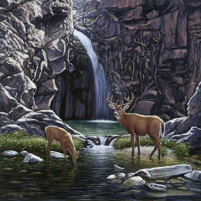 Sheltered Cove-John Van Straalen-Giclee Print