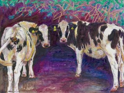Sheltering Cows, 2011-Helen White-Giclee Print