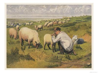 Shepherd in a Meadow with His Dog and His Sheep--Giclee Print
