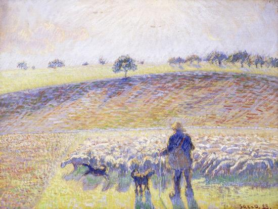 Shepherd with Sheep, 1888 Giclee Print by Camille Pissarro | Art com