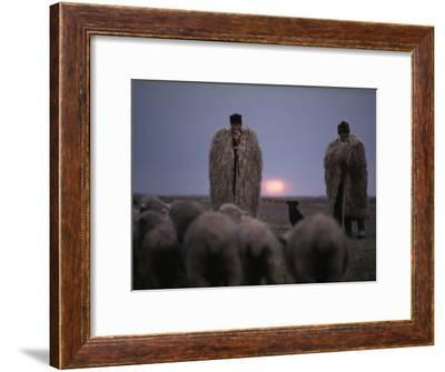 Shepherds Wear Huge Suba to Escape Autumn's Chill-Albert Moldvay-Framed Photographic Print