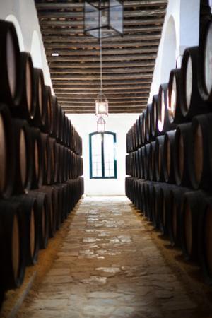 Sherry casks in a winery, Gonzalez Byass, Jerez De La Frontera, Cadiz Province, Andalusia, Spain