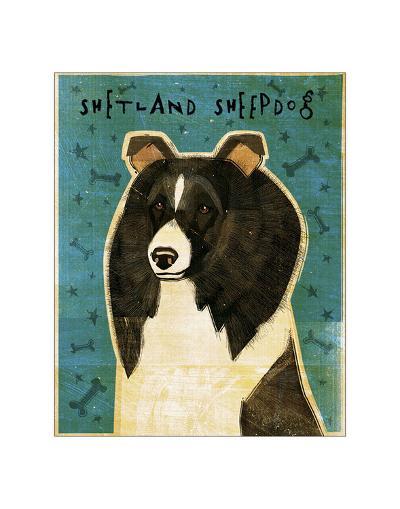 Shetland Sheepdog (Black & White)-John Golden-Giclee Print