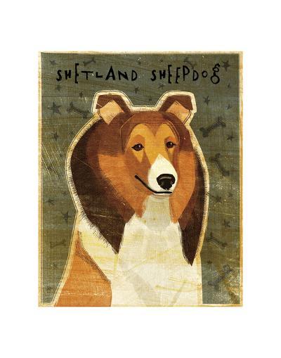 Shetland Sheepdog-John W^ Golden-Art Print
