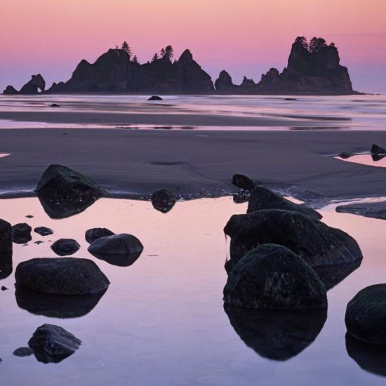 Shi Shi Beach, Olympic National Park, Washington, USA-Charles Gurche-Photographic Print