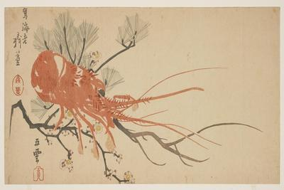 Lobster, Plum and Pine Branch, C.1818