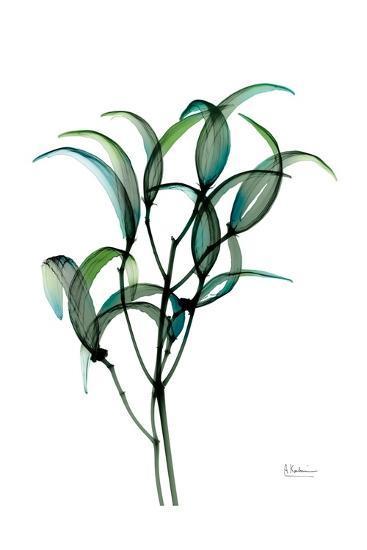 Shimmering Botanical 1-Albert Koetsier-Art Print