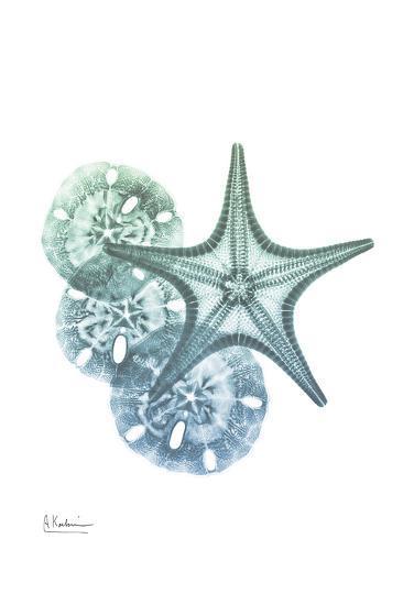 Shimmering Dollars and Stars-Albert Koetsier-Art Print