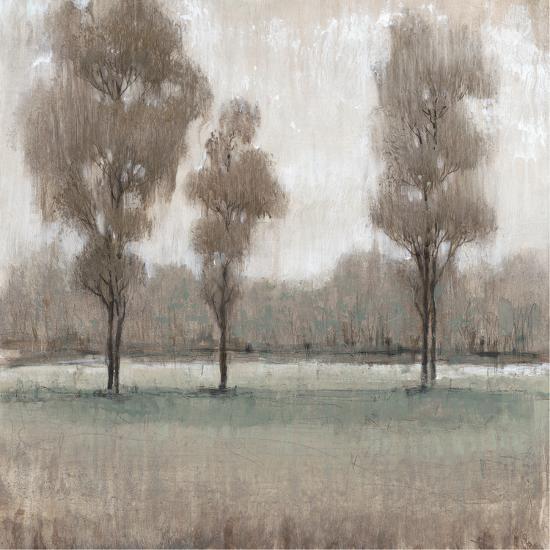 Shimmering Trees II-Tim OToole-Premium Giclee Print