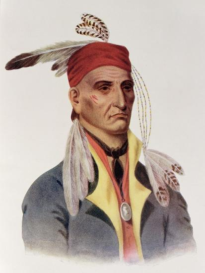 """Shin-Ga-Ba W""""Ossin or """"Image Stone,"""" a Chippeway Chief-James Otto Lewis-Giclee Print"""