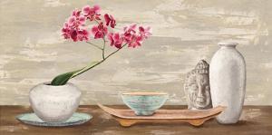Enlightened by Shin Mills