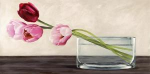 Modern Composition, Tulips by Shin Mills