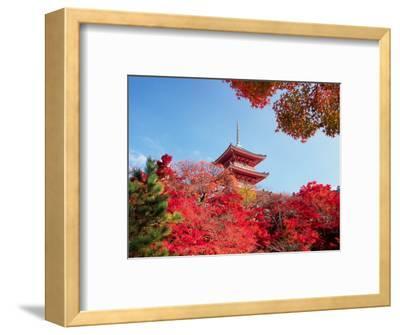 Autumn, Kyoto, Japan