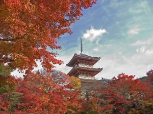 Pagoda in Autumn Color, Kyoto, Japan by Shin Terada