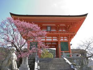 Soaring Gate of Temple, Kyoto, Japan by Shin Terada