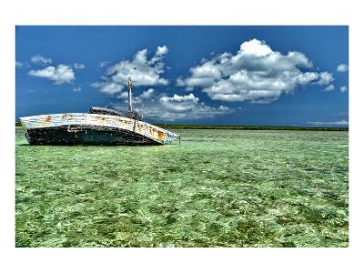 Ship Recked in Paradise-Jan Michael Ringlever-Art Print