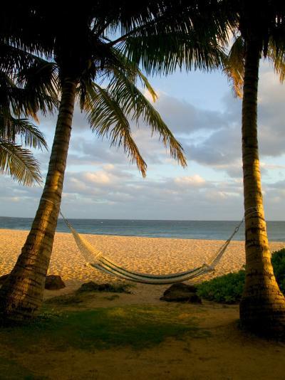 Ship Wreck Beach and Hammock, Kauai, Hawaii, USA-Terry Eggers-Photographic Print