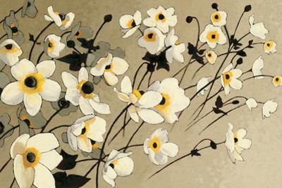 Anemones Japonaises Blancs by Shirley Novak