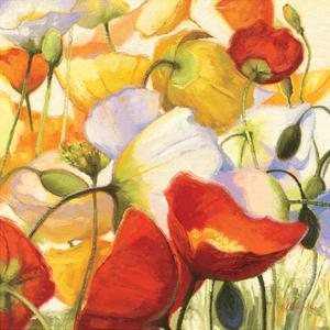 Poppies Up Close by Shirley Novak