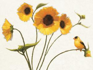 Sunny Flowers on White by Shirley Novak