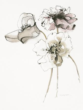 Three Somniferums Poppies Neutral by Shirley Novak