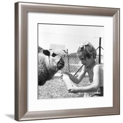 Shirley's Friend-Ken Harding-Framed Photographic Print