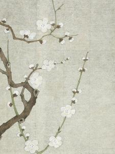 Meika jûyû by Shiseiho