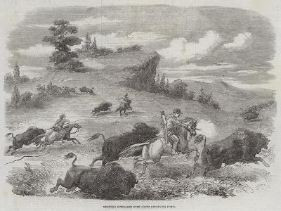 Shooting Buffaloes with Colt's Revolving Pistol--Giclee Print