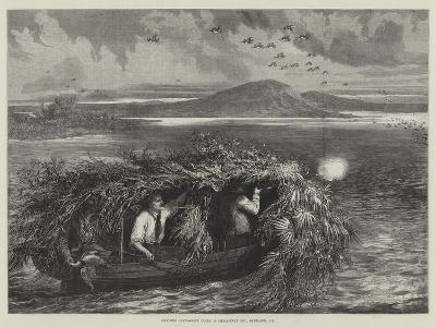 Shooting Canvas-Back Ducks in Chesapeake Bay, Maryland, US--Giclee Print