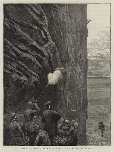 Shooting Sea Fowl on the Bass Rock, Firth of Forth-William Bazett Murray-Giclee Print