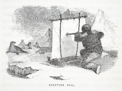Shooting Seal-Elisha Kane-Giclee Print