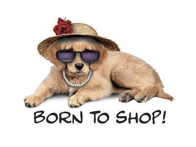 Shop Pup--Giclee Print