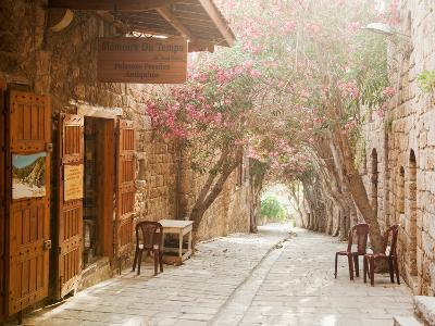 Shops in a Narrow Street in the Souq at Byblos, a Small Coastal Town in Lebanon-Cultura Travel/Philip Lee Harvey-Photographic Print