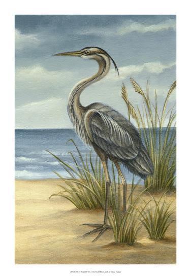 Shore Bird II-Ethan Harper-Art Print