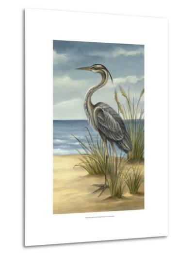Shore Bird II-Ethan Harper-Metal Print