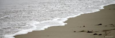 Shore Break-Nicole Katano-Photo