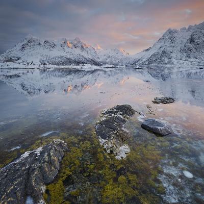 Shore with Sildpollneset (Peninsula), Vestpollen, Austnesfjorden-Rainer Mirau-Photographic Print