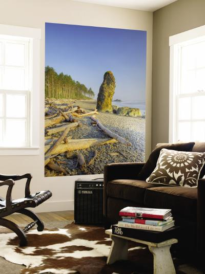 Shoreline and Seastacks, Ruby Beach, Olympic National Park, Washington, USA-Jamie & Judy Wild-Wall Mural