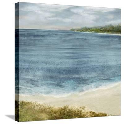 Shoreline Meander-Paul Duncan-Stretched Canvas Print