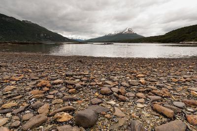 Shoreline Near Drake Passage, Tierra Del Fuego, Patagonia, Argentina-James White-Photographic Print