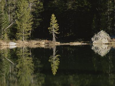 Shoreline Trees and Rock Reflected on the Surface of String Lake-Raymond Gehman-Photographic Print