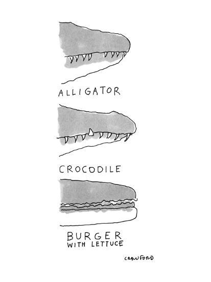Shows the snout of a crocodile, the snout of an alligator, and the side vi? - New Yorker Cartoon-Michael Crawford-Premium Giclee Print