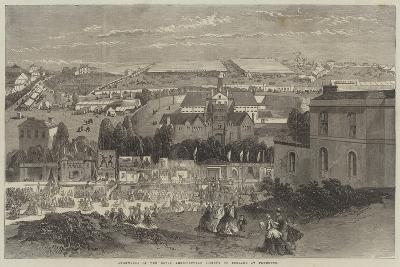 Showyards of the Royal Agricultural Society of England at Plymouth-Richard Principal Leitch-Giclee Print