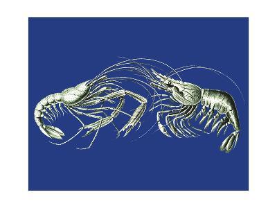 Shrimps On Blue-Fab Funky-Art Print