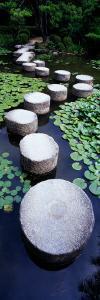 Shrine Garden, Kyoto, Japan