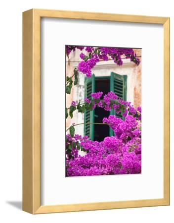 Shuttered Window and Blossom-Frank Fell-Framed Photographic Print