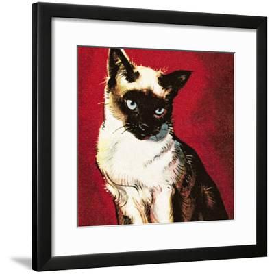 Siamese Cat-McConnell-Framed Giclee Print